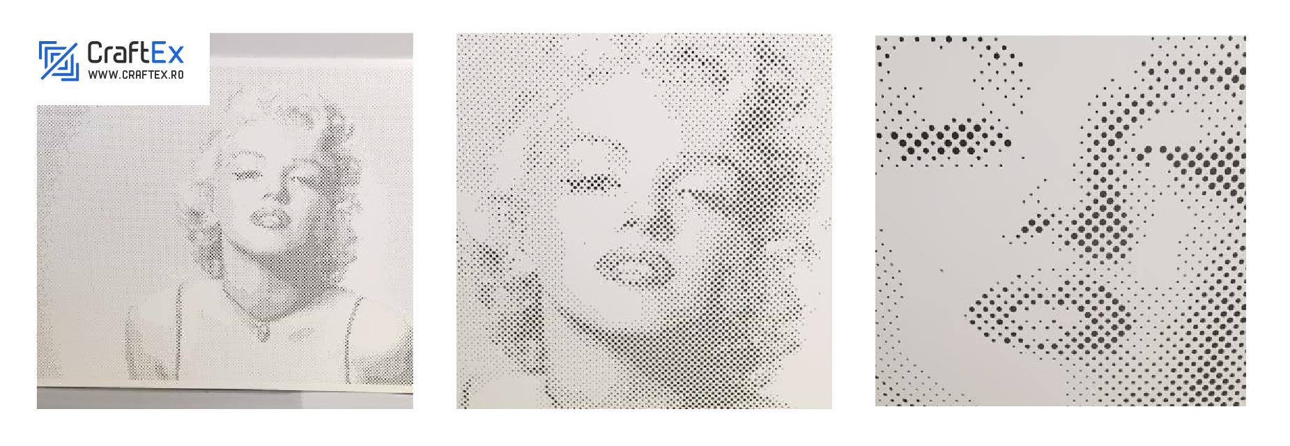 www.craftex.ro - Portrete - Marylin